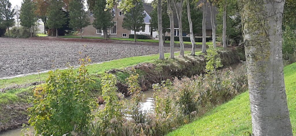 Boerderij aan de Oudebildtdijk