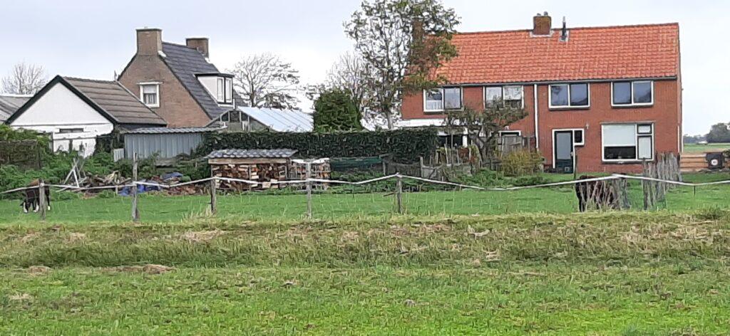 Dierenparkje achter de Schuringaweg Nij Altoenae